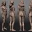 Corsi brevi, Anatomia e Fisiologia umana
