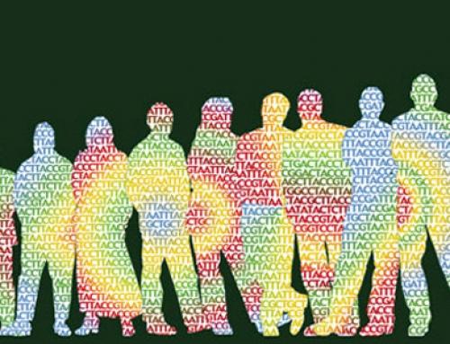 Counseling Umanistico a Mediazione Corporea