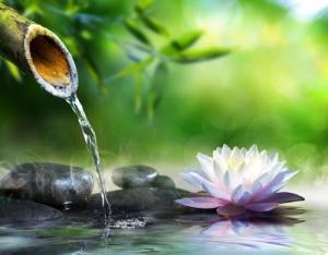 mindfulness stage