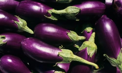Alimentazione Luiben, Non solo parmigina